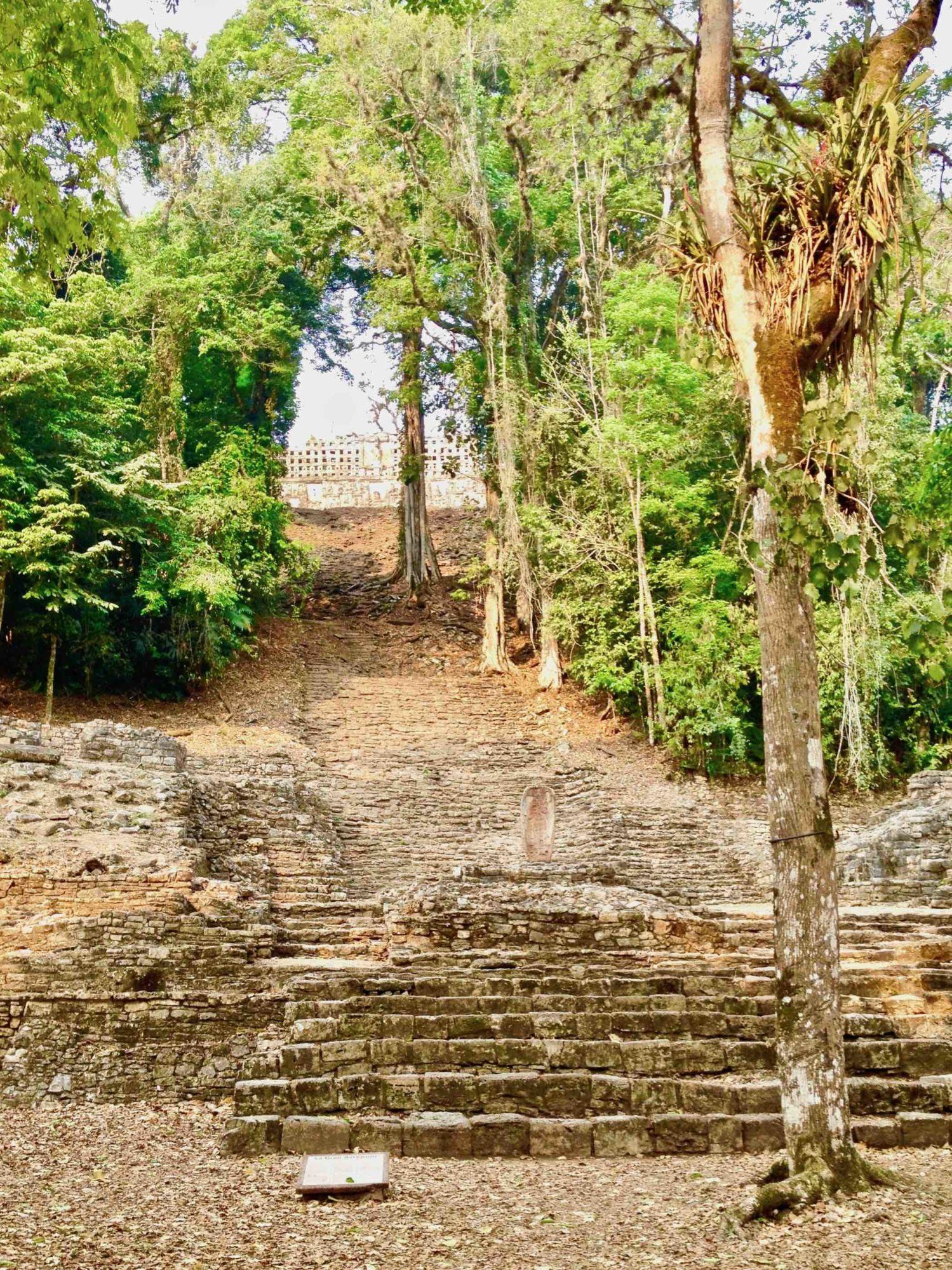 V Yaxchilánu je napyramidách částečně ponechán původní porost